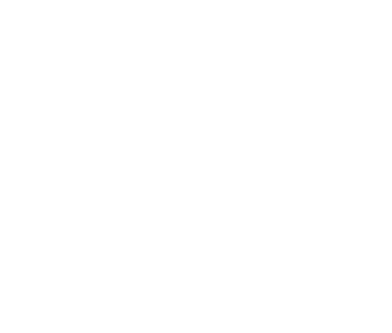 Logo Fat City Rollers